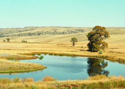 beautiful-property-montana